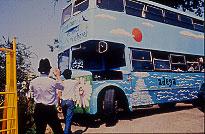 autobusverquidos.jpg