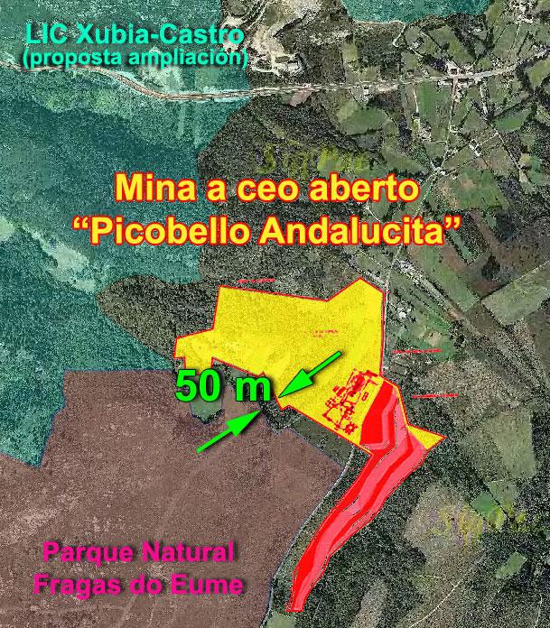 picobello4.jpg